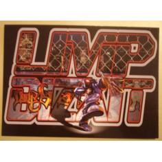Carte postale Limp Bizkit - Significant other