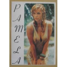 Autocollant Pamela Anderson