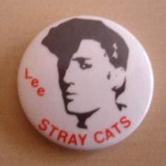 Badge Stray Cats