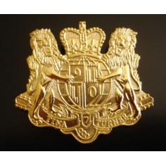Badge Tina Turner