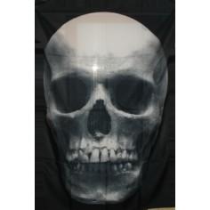 Drapeau Skull
