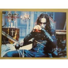 Postcard Crow