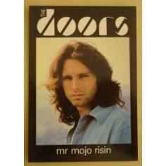Postcard Doors - Mr Mojo risin