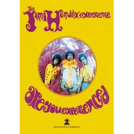 Drapeau Jimi Hendrix Experience - Are you experienced